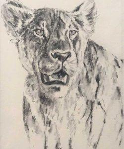 F_A_Lion.jpg