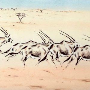Oryx in Motion