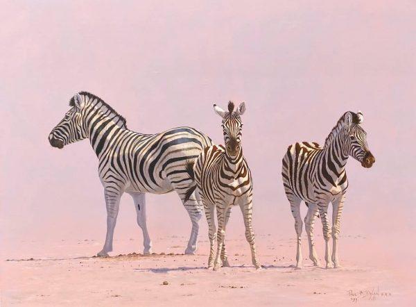 Some Stripy Guys