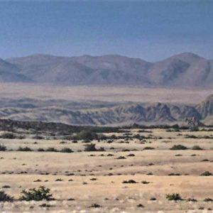 V_S_W_Desert-Scape_