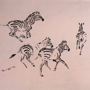 Zebras in Gallop