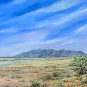 brandberg landscape