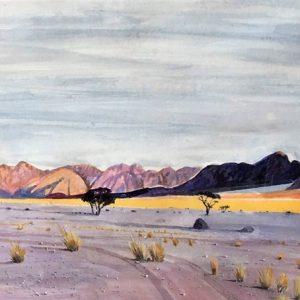 namib desert landscape colour