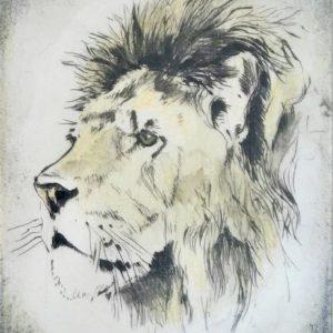 p_h_lion-Portrait