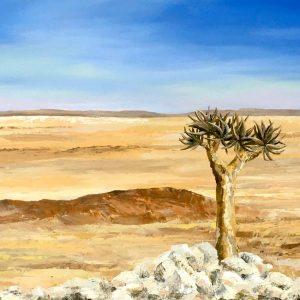 quiver tree namib desert landscape