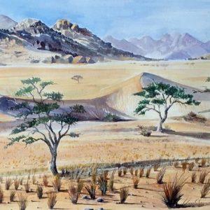 southern namibia oryx landscape desert